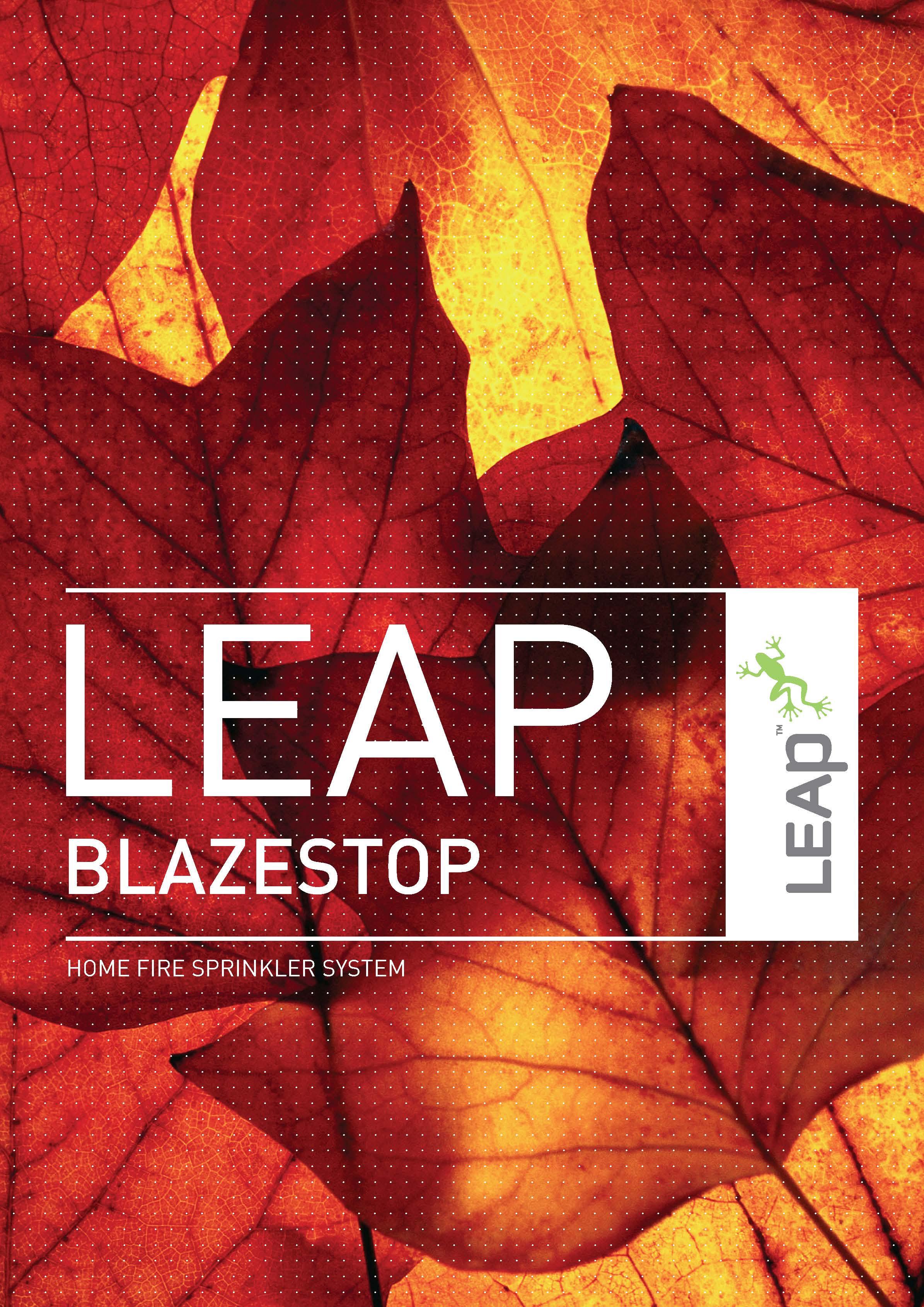 LEAP_BLAZESTOP__Hdr.jpg