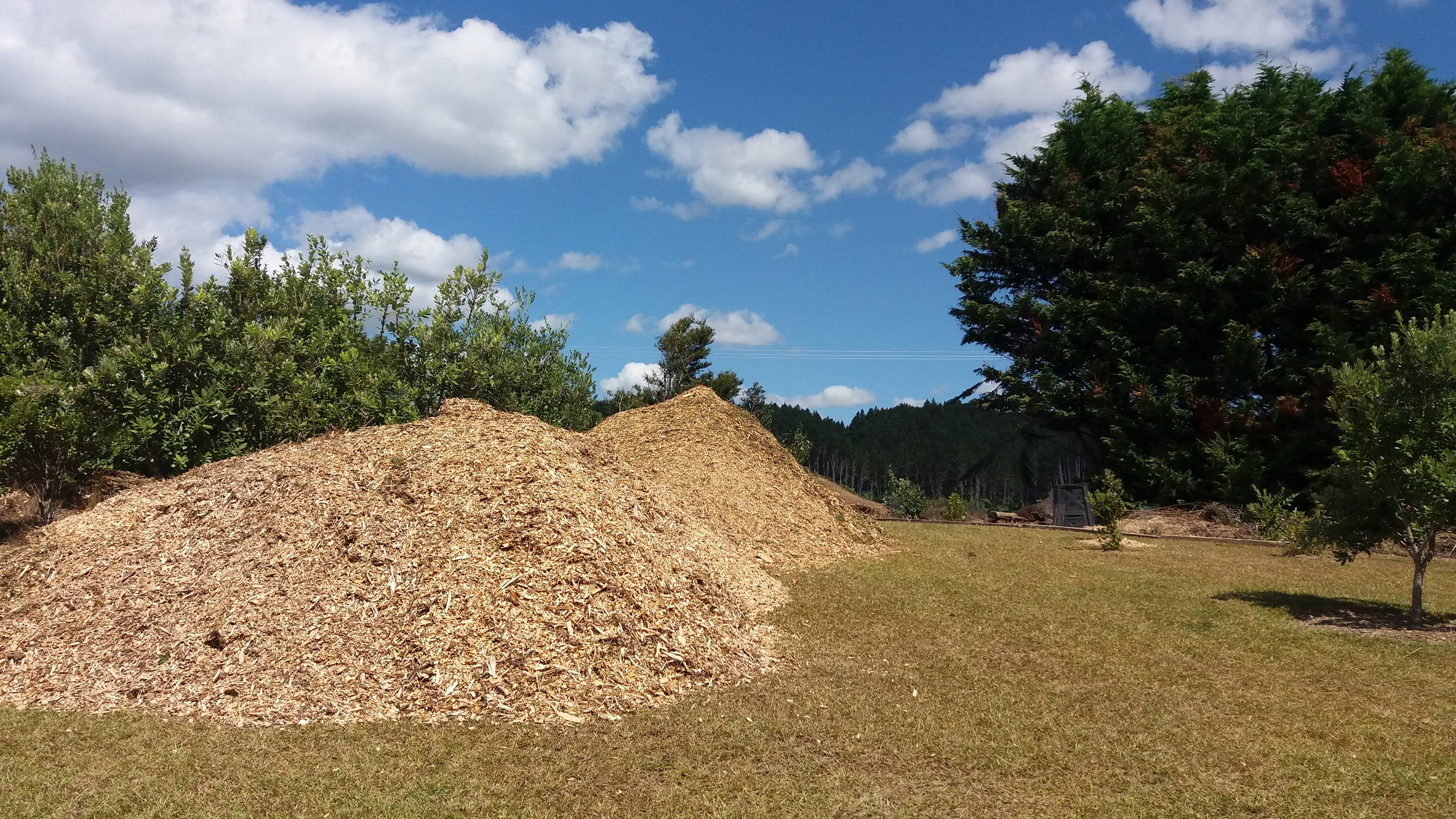 You can never have too much wood chip