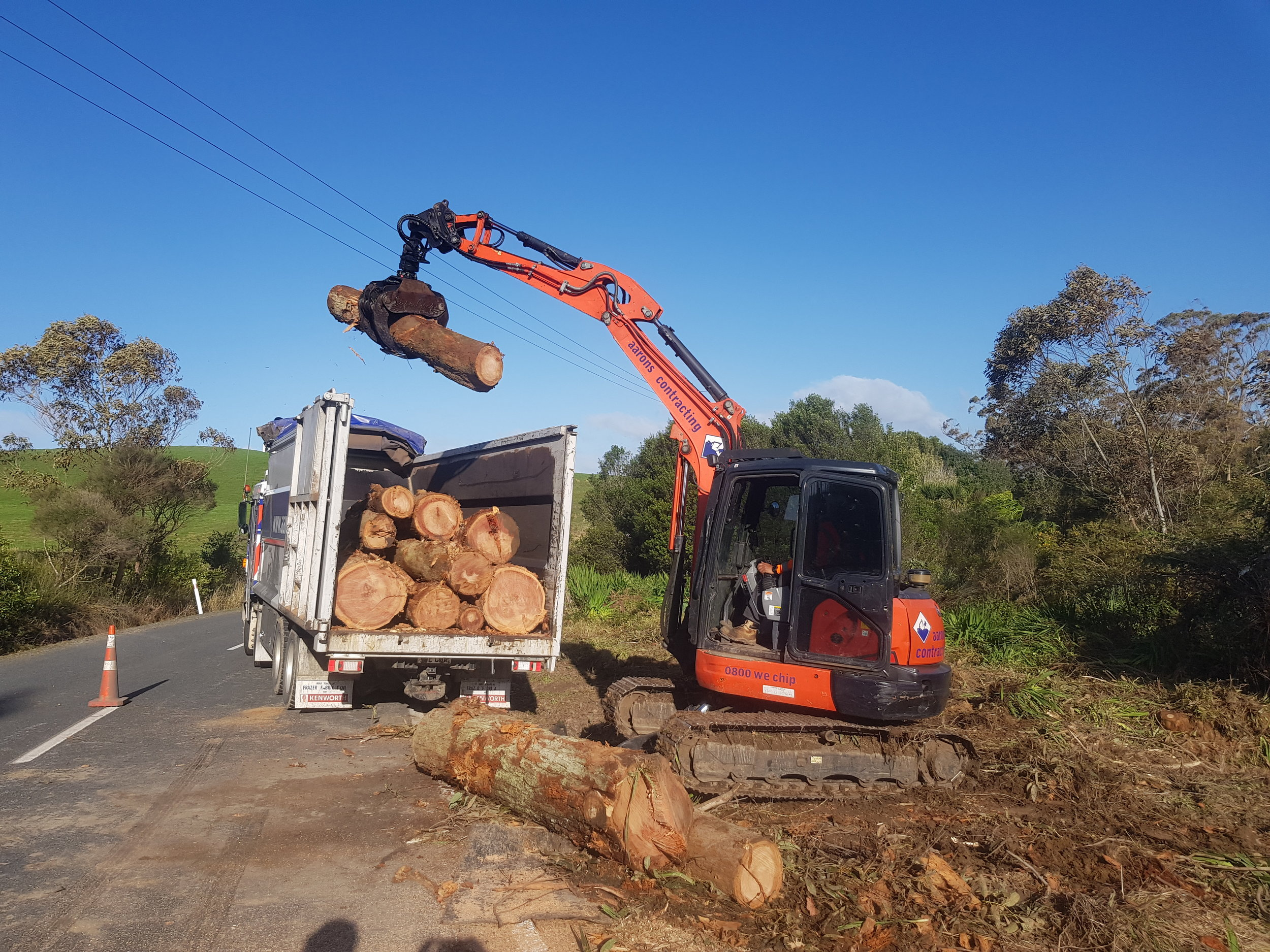 Large tree removal Waipu.jpg