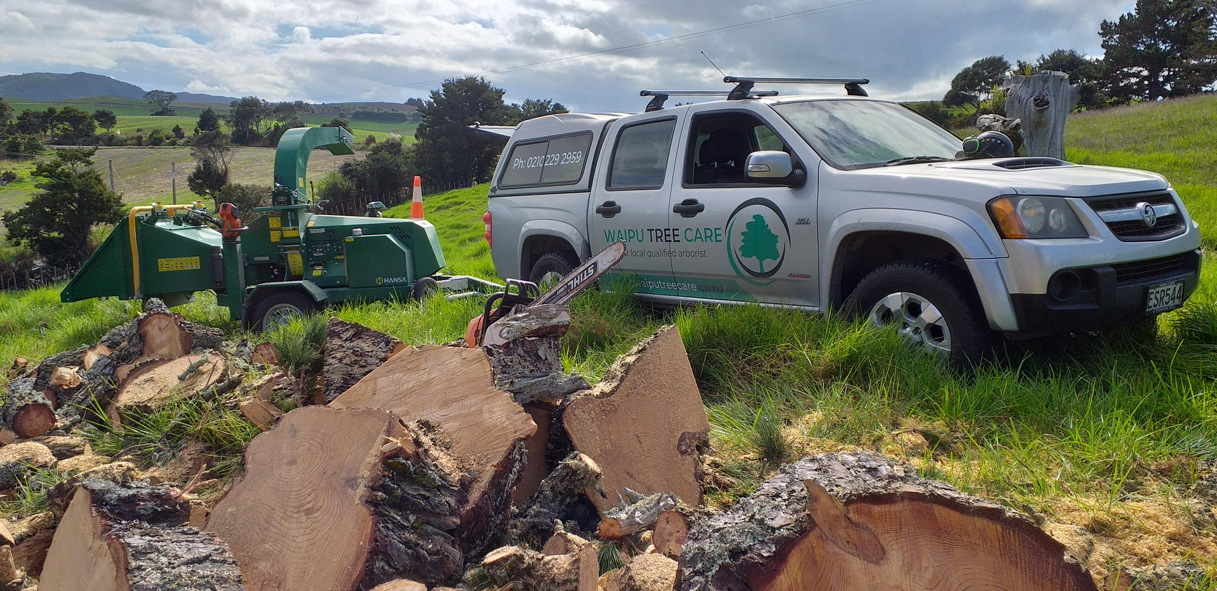 Tree removal Waipu.jpg