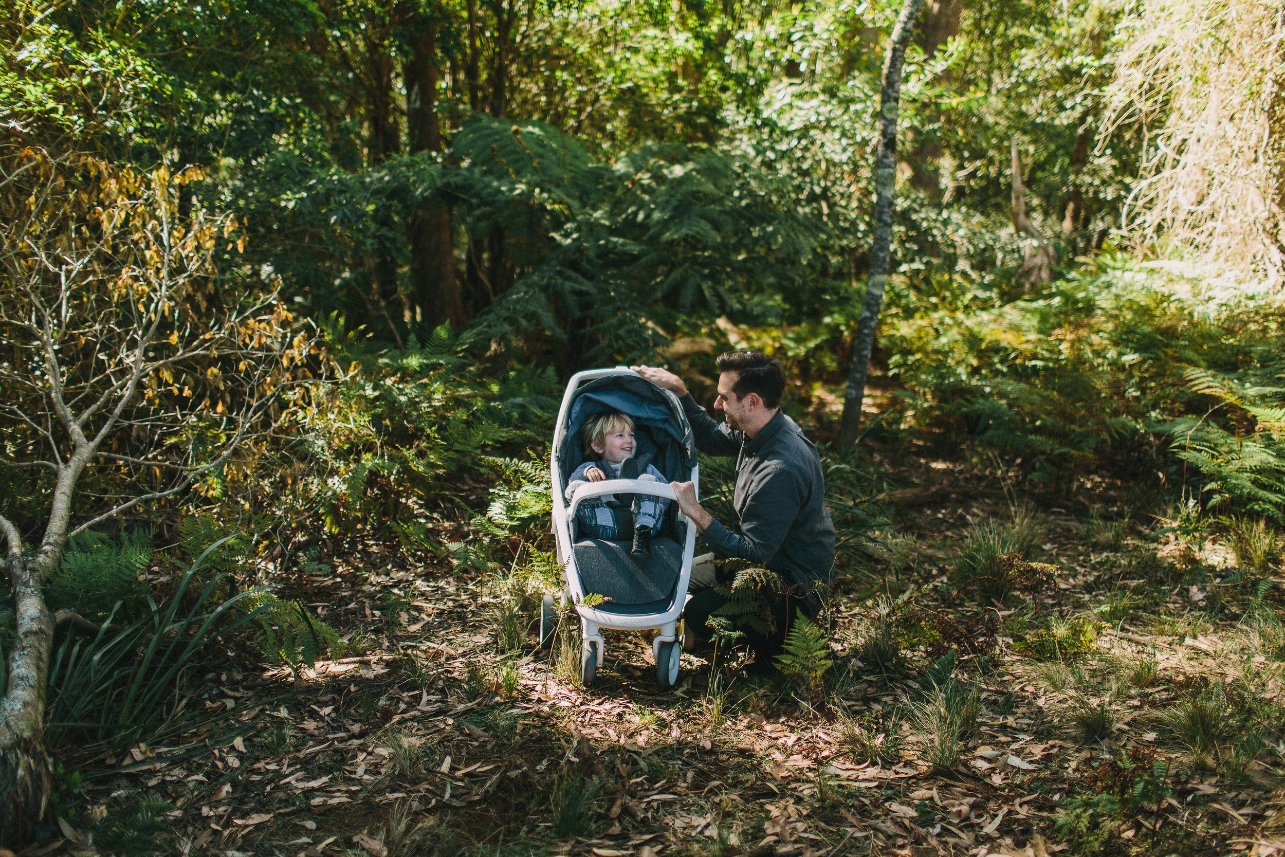 greentom-marketing-The Rise of the Eco Buggies