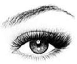 cat-eyelash-extension-style.jpg