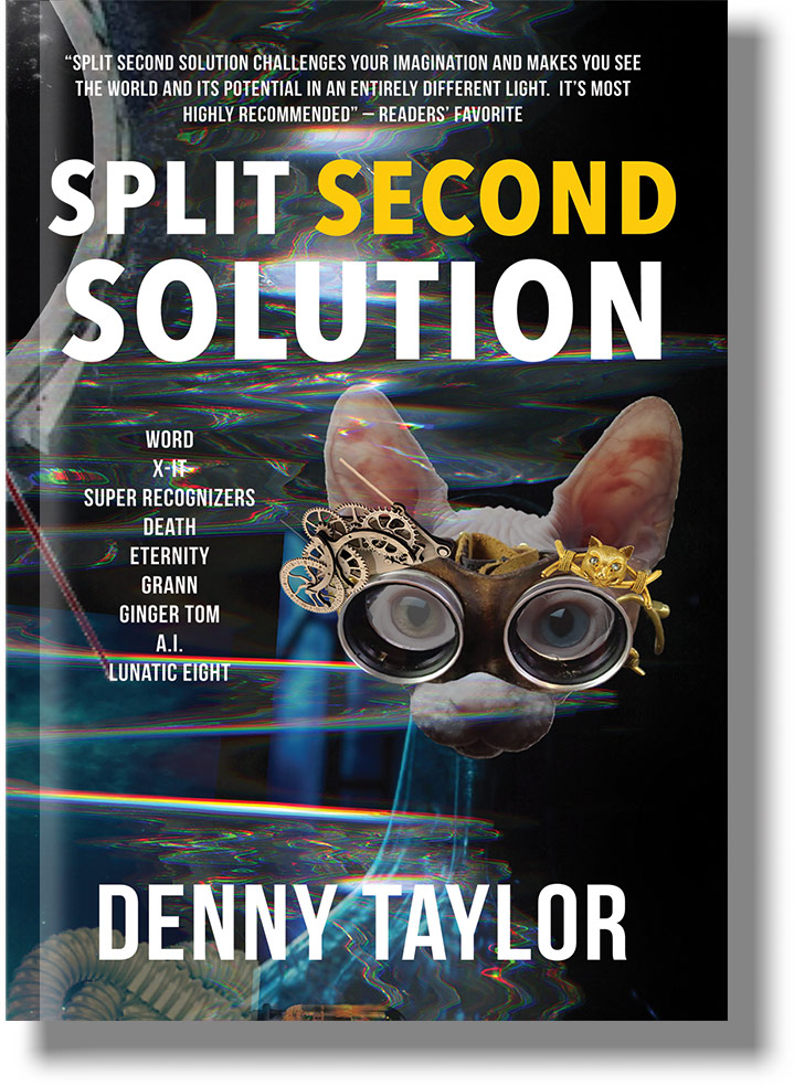 750x1000-split-second-solution.jpg