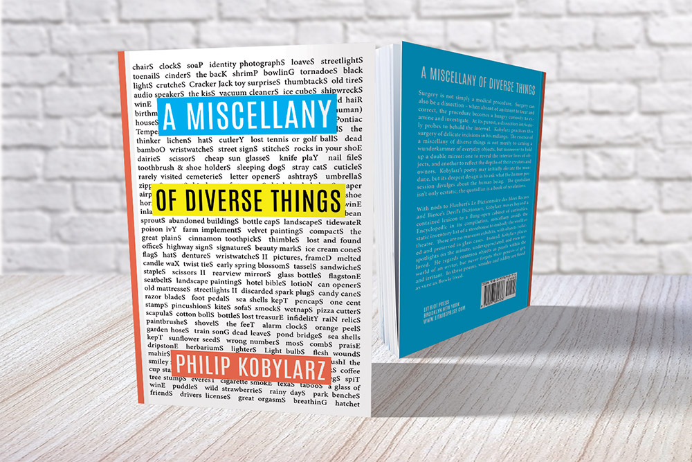 1500x1000-miscellany-of-diverse-things-philip-kobylarz-02.jpg