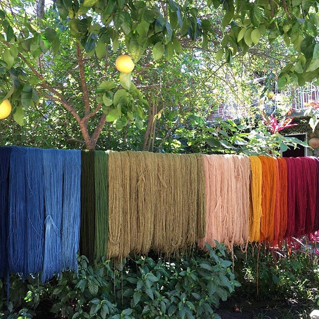 The best part of traveling is actually getting to know the locals and learning unexpected things. That's why I'm super excited about the Weaving & Mezcal retreat in Oaxaca, MX that my friend Stephanie @distillcreative is planning! She's a fiber artist and was really inspired by her time in Teotitlán del Valle, Oaxaca, so she's putting together a retreat this August where you can learn from local artisans about weaving and mezcal. Check it out here:  https://distillcreative.com/oaxaca-weaving-retreat-2019