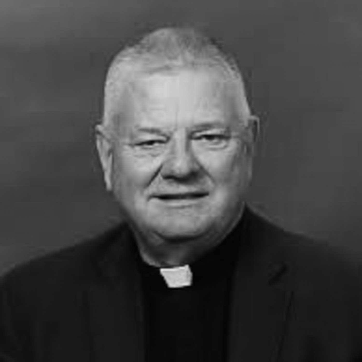 John T. Pless - (D. Litt, Concordia University, Chicago) is Assistant Professor of Pastoral Ministry and Missions and Director of Field Education at Concordia Theological Seminary in Fort Wayne, Indiana.
