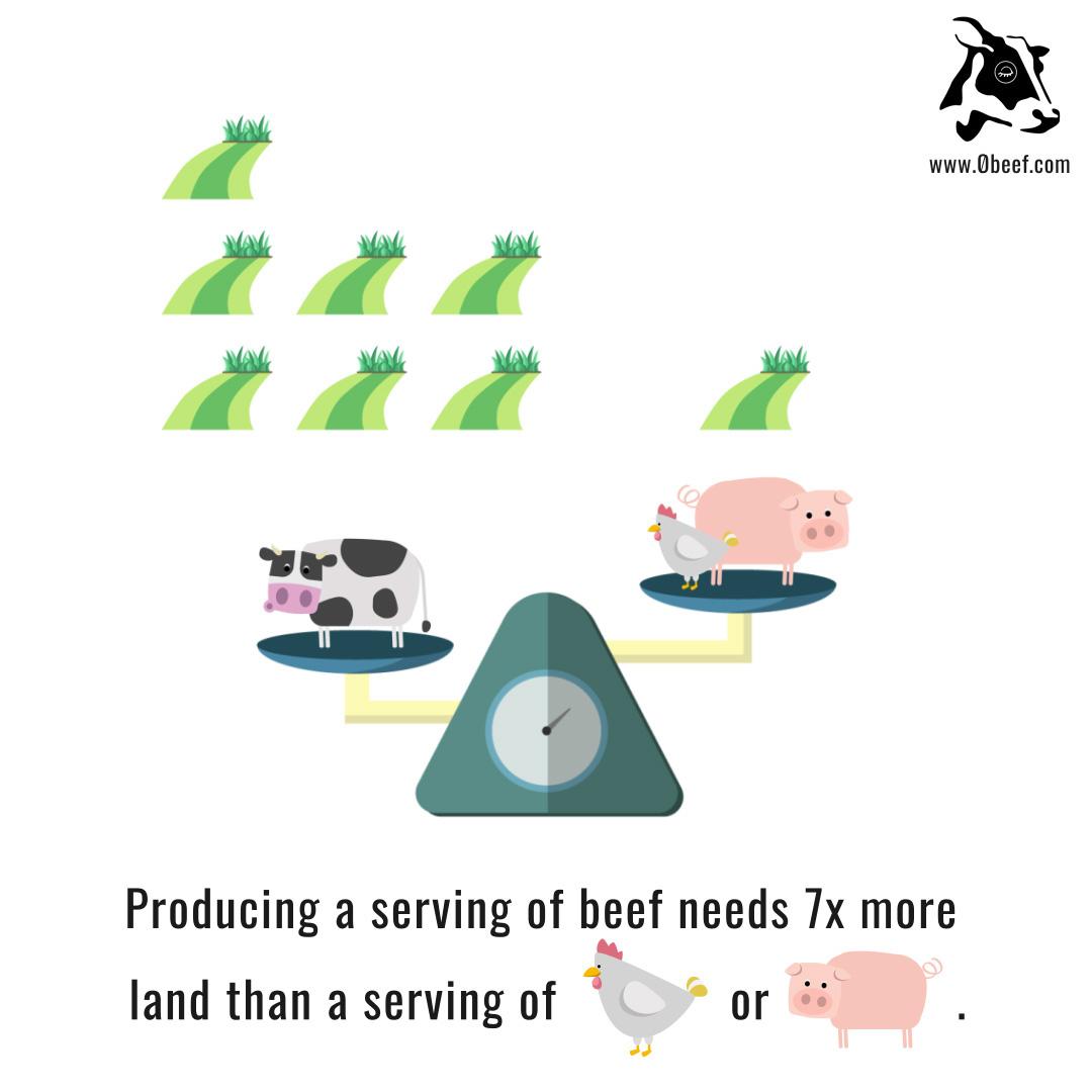 3a. Beef vs. Pork.jpg