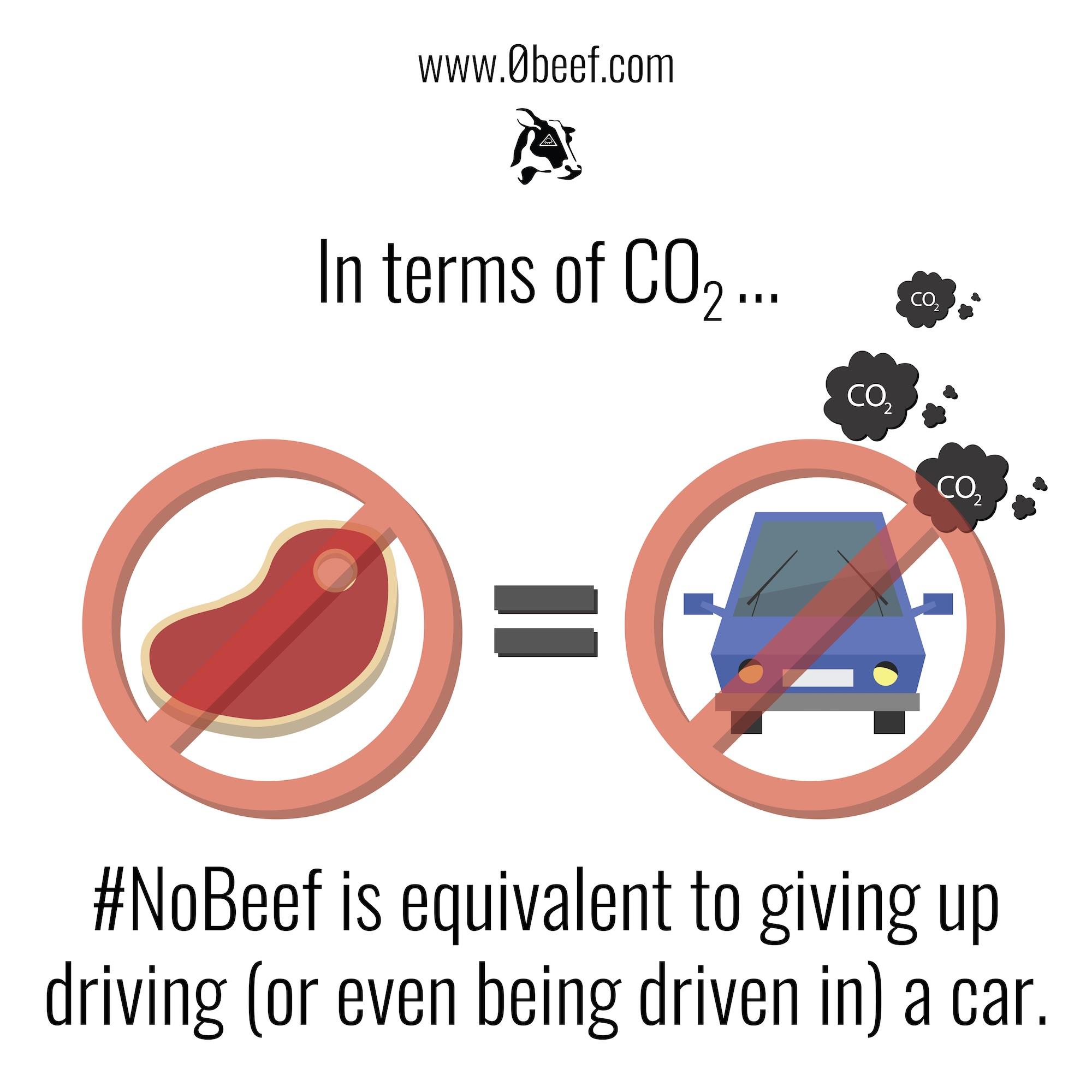 15. Beef vs Cars.jpg