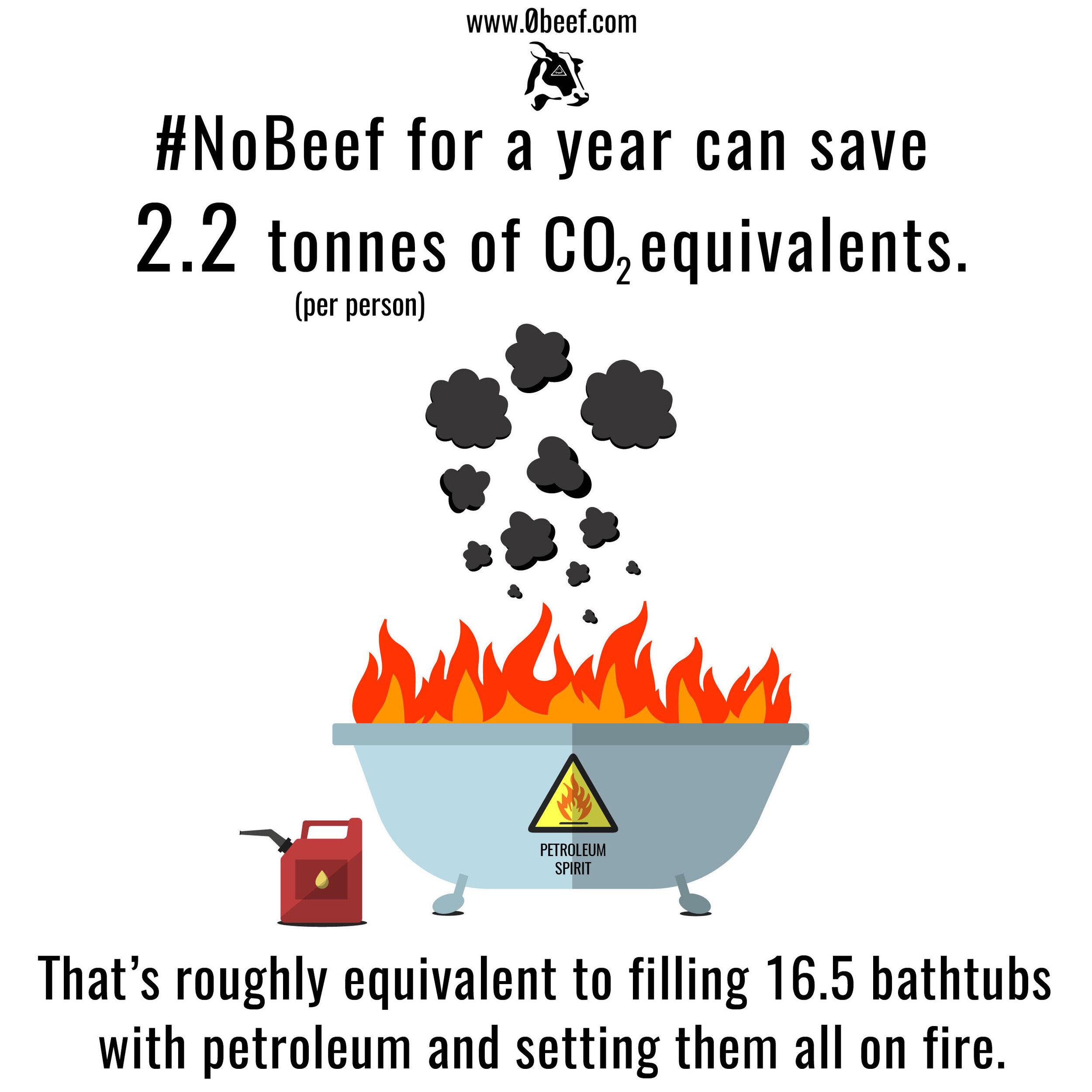 12. CO2.jpg