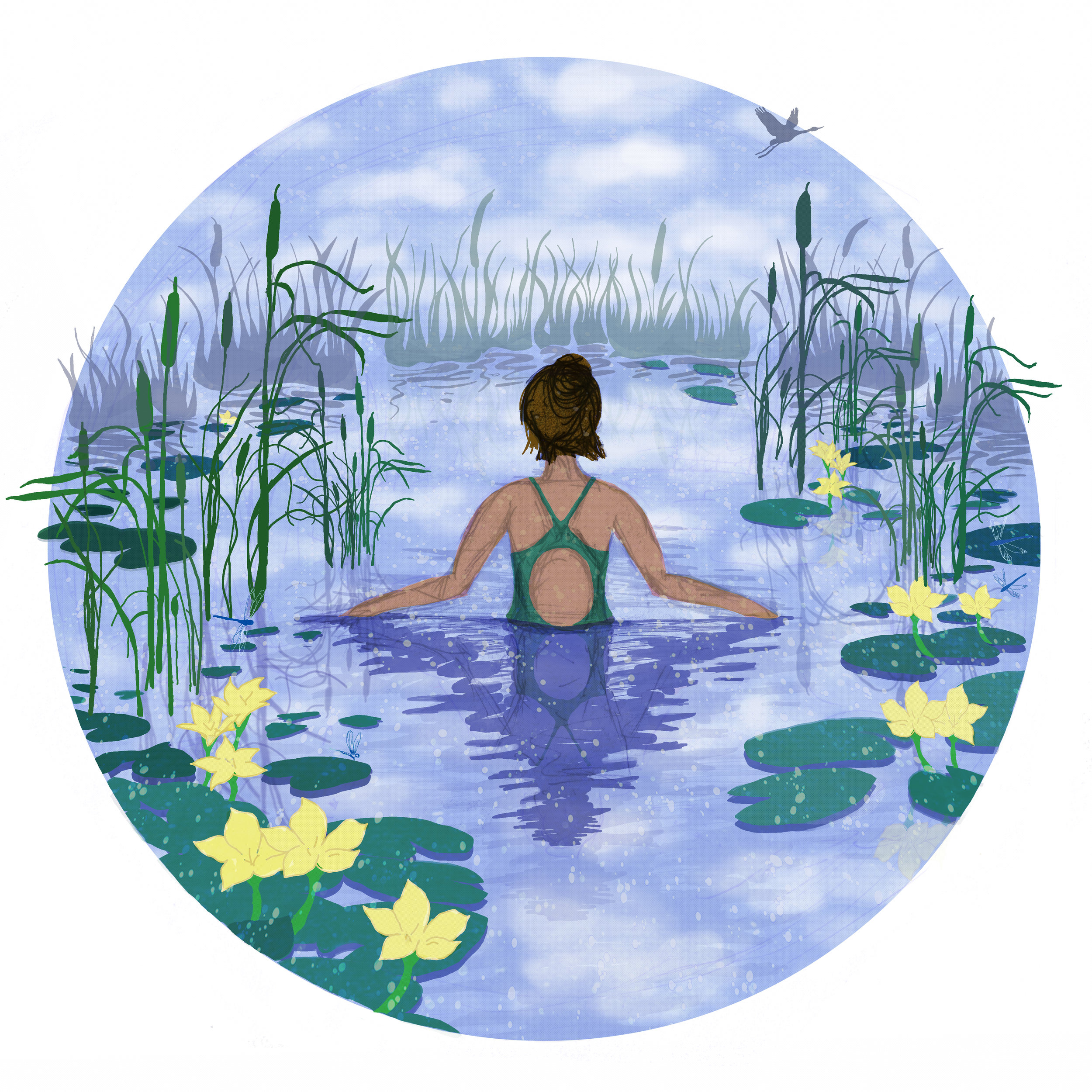 Waterlily FINAL.jpg