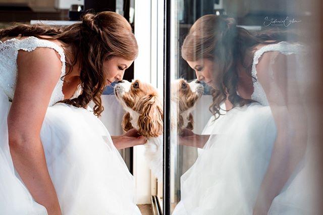 I loved having this little dog apart of the photography sessions 😍 #furbaby . . . . . . . . . . . . #elopementcollective #radlovestories #weddedwonderland #winerywedding #weddingphotographyinspiration #weddingphotographermelbourne #weddinggoals #australianweddingphotographer #inspiredbylove #instagood #picoftheday #lightandshadow #lightchaser #teamcanon #thepursuitofjoyproject #togetherjournal #theperfectmoment #fearlessawards #fearlessphotographer #letsspc #yarravalleryweddingphotographer #shesaidyes #squadgoals #bridalparty #bridalpartygoals #bride #bridesmaids #groom #groomsmen