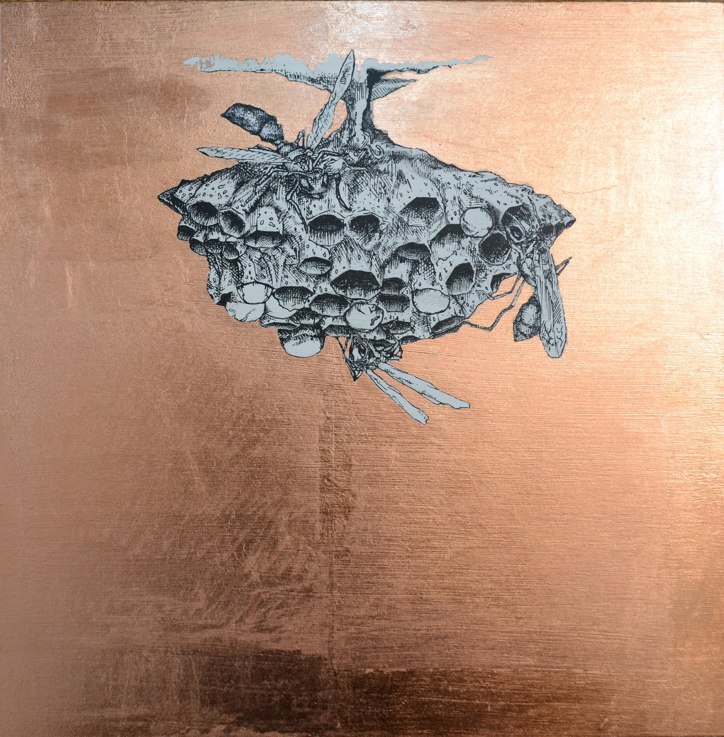 1_Wasp Nest.jpg