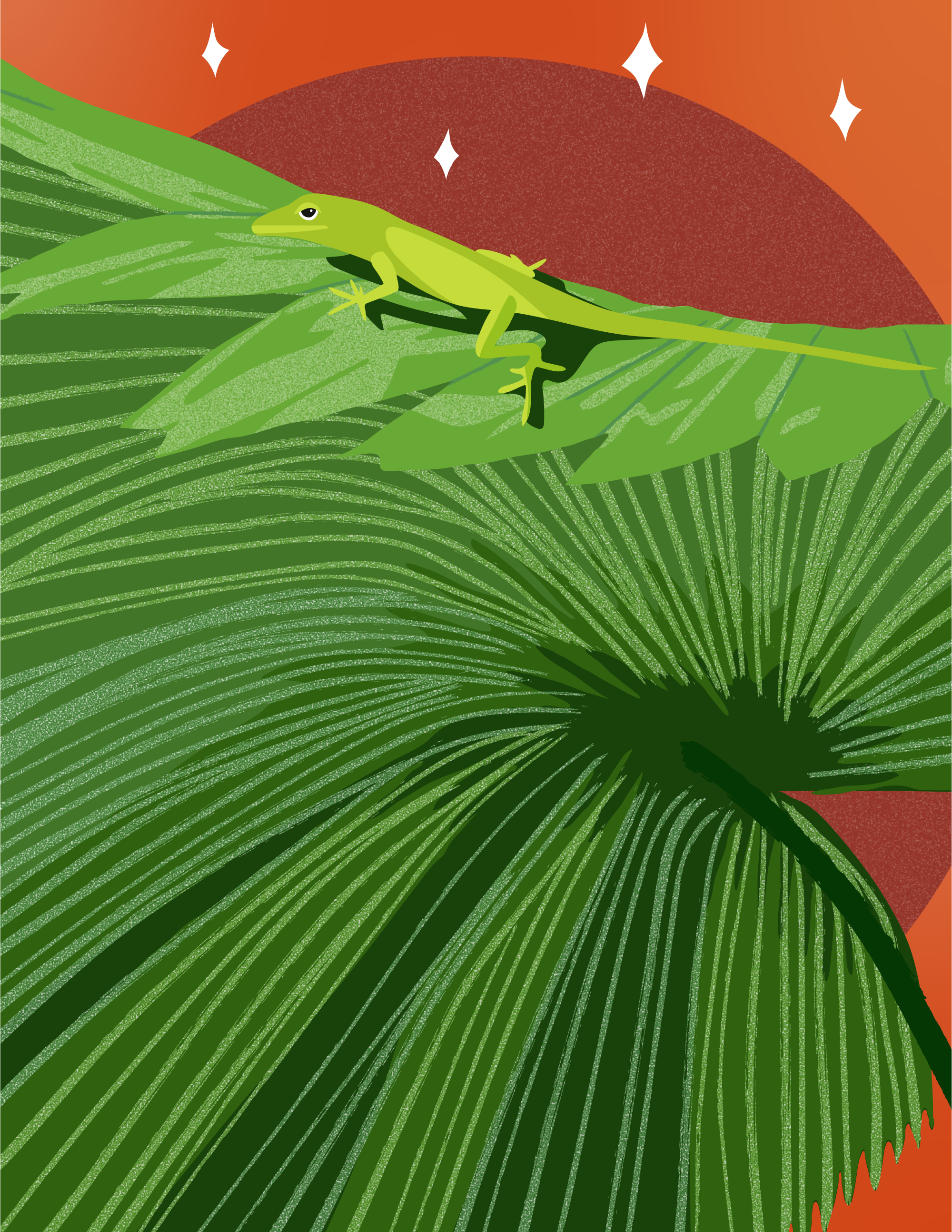 Green-Anole.png
