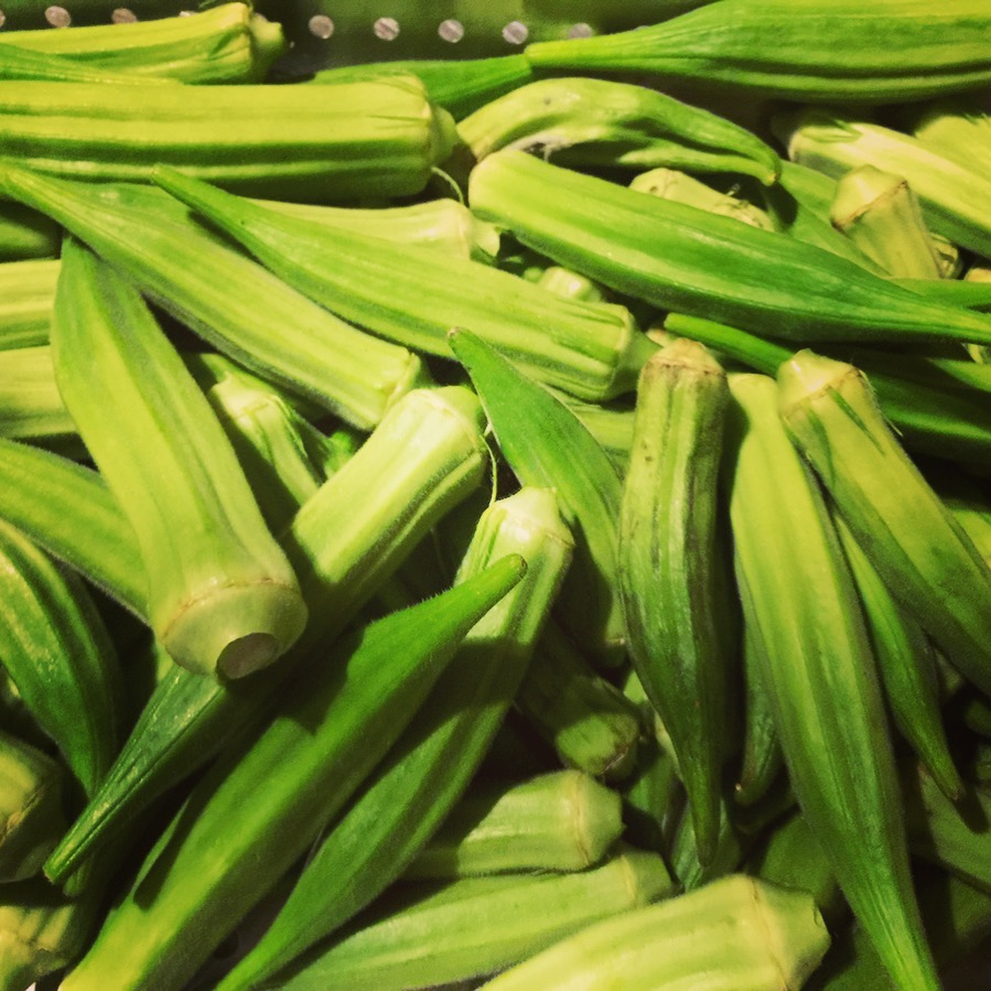 Freshly picked okra