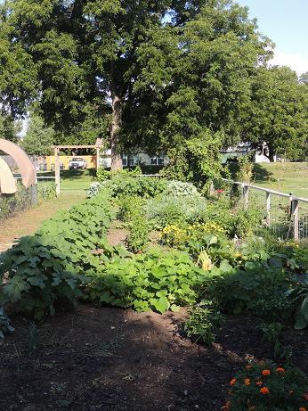 Classic garden in summer