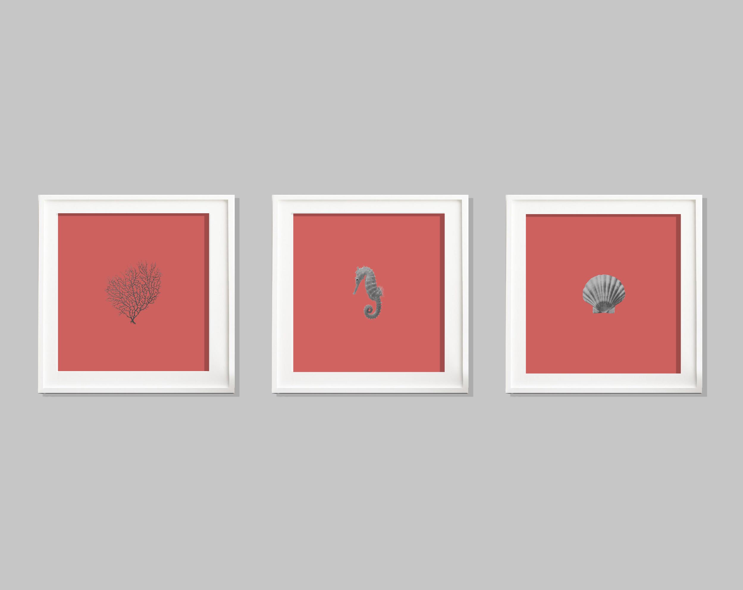 Set of 3 Living Coral C-Type Prints