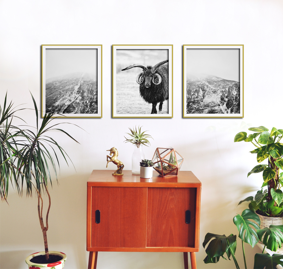 Set of photographic prints by  Aga Farrell