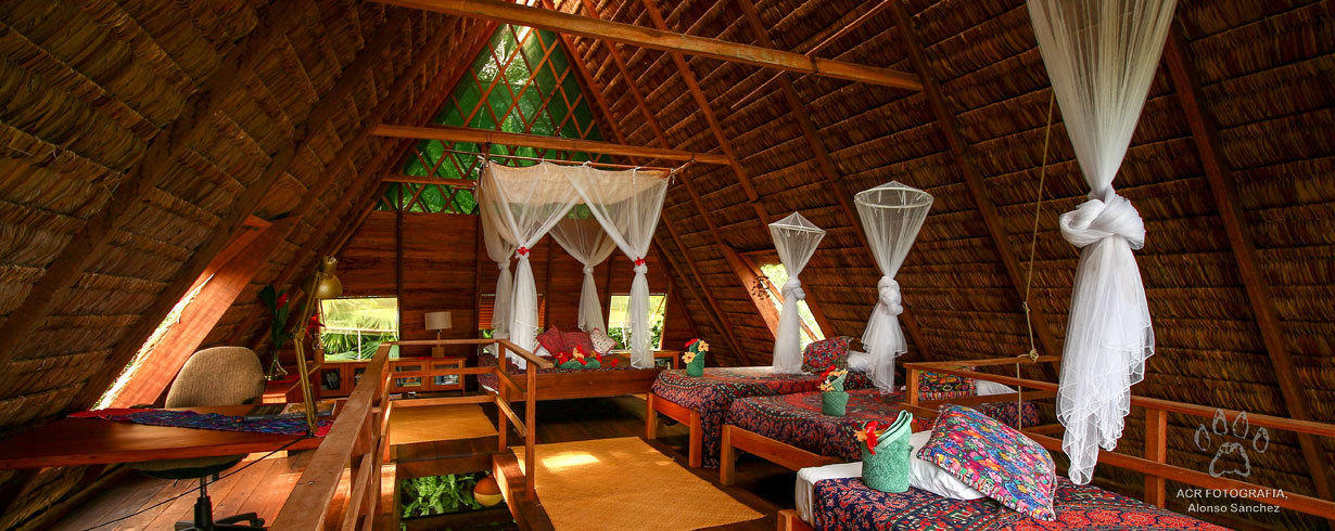 deluxe-cabin-with-ocean-view-on-carate-beach-finca-exotica-ecolodge-costa-rica.jpg