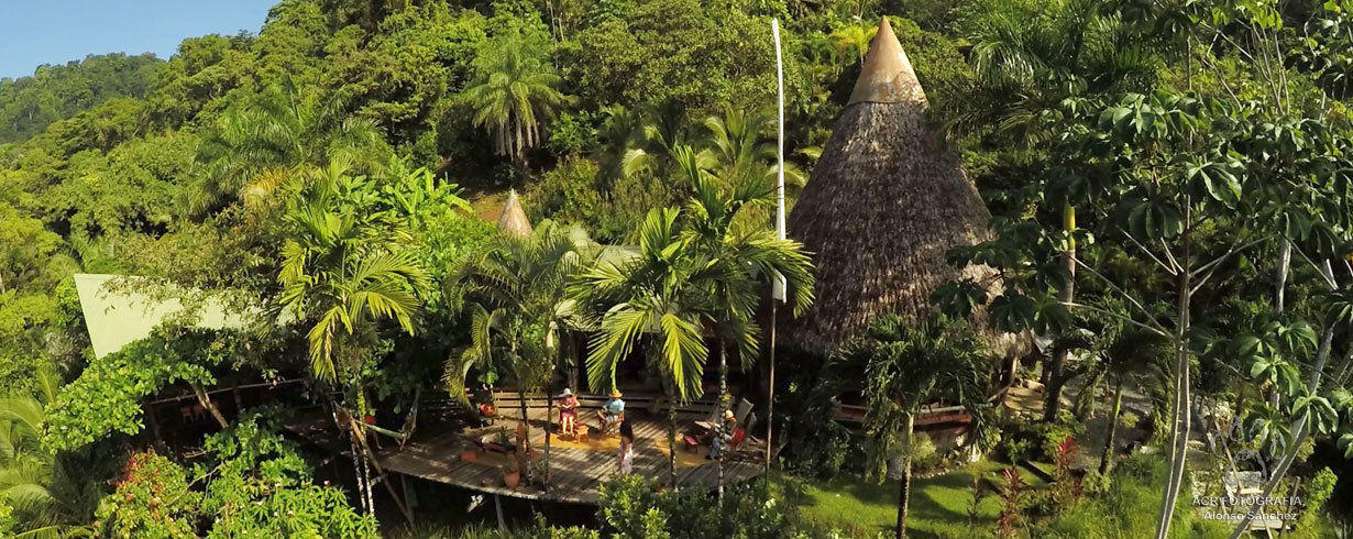 tropical-lifestyle-surrunded-by-rainforest-finca-exotica-ecolodge.jpg