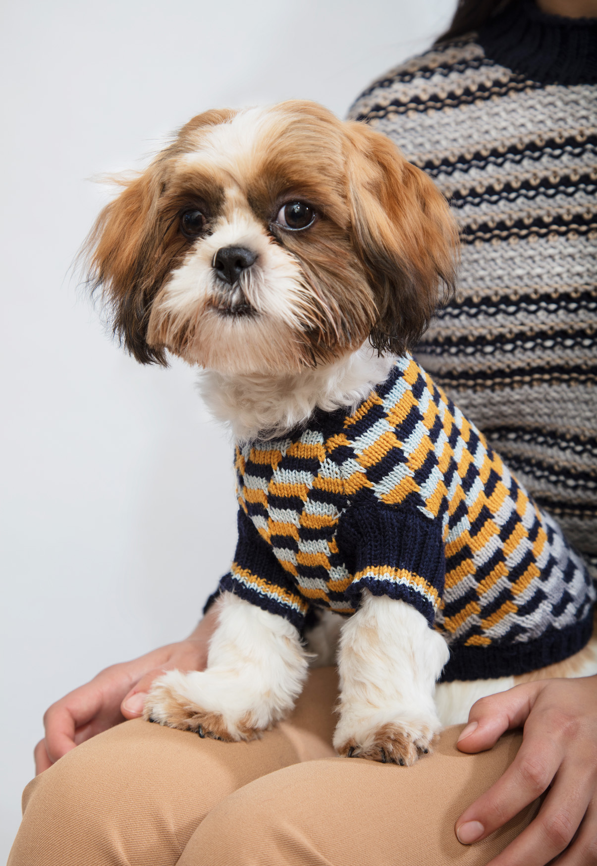 DOGWEAR COLLECTION UK