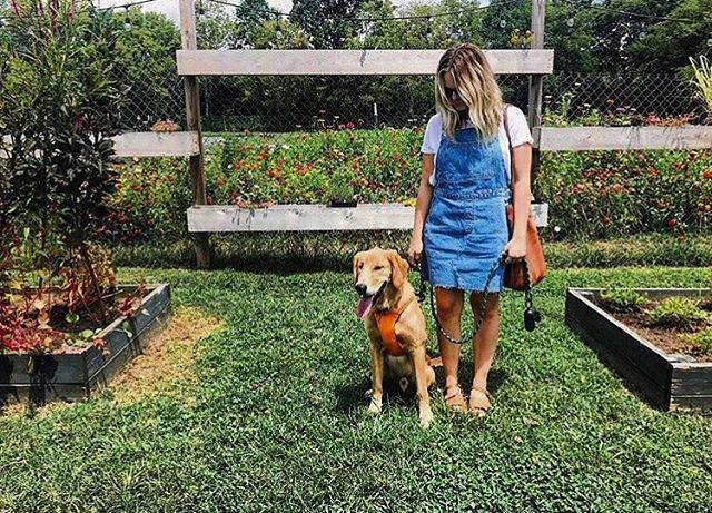 We love when you bring the whole family and now you can bring your best friend too! The Old School Dog Park will be opening soon! Stay tuned for more details! . . Photo by @sarahkhathaway