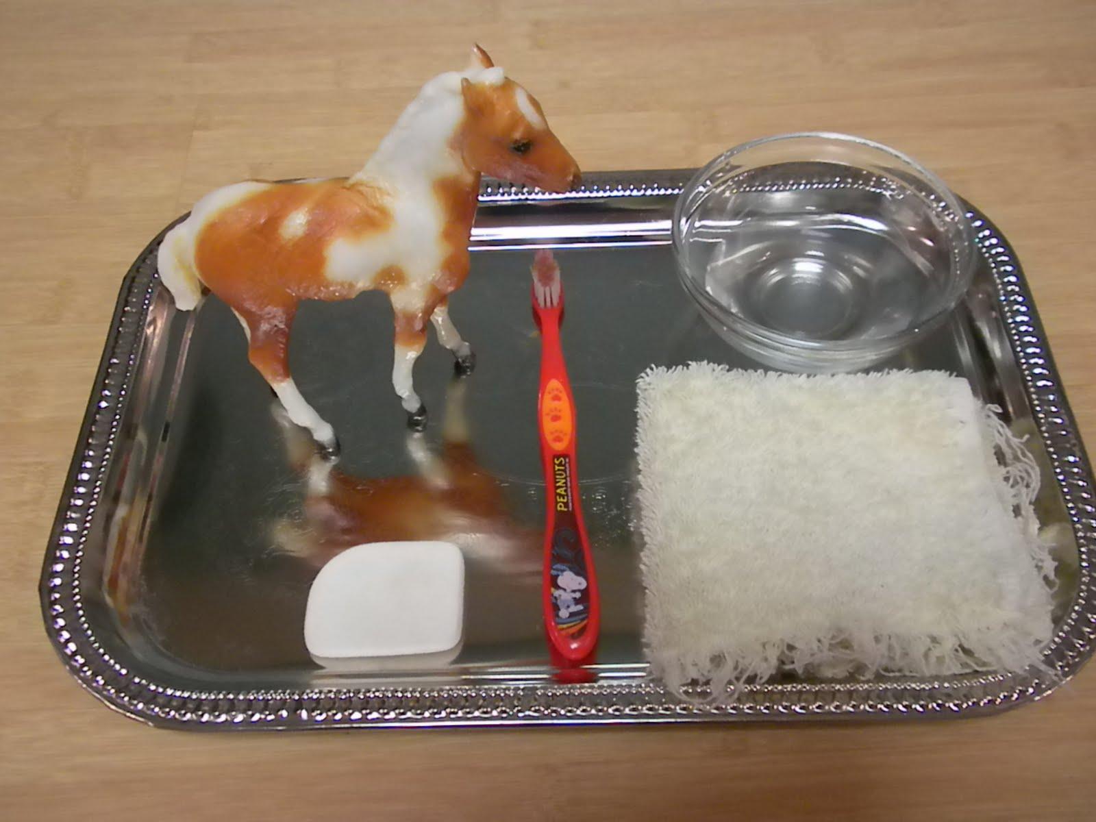 washing-the-horse-kids-activities.JPG