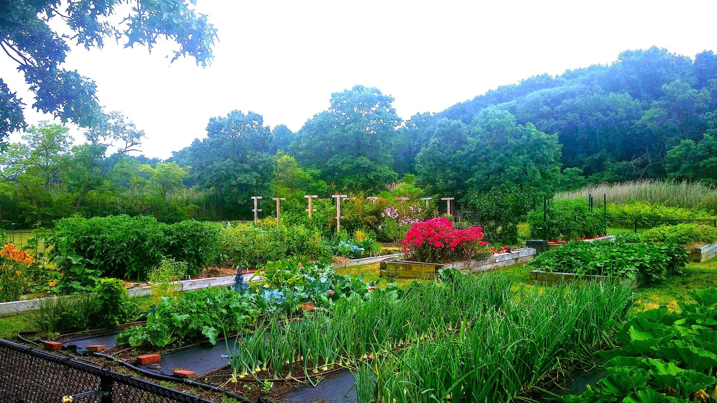 vegetable and flower garden.jpg