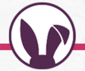 RabbitHole.network   A woman-powered blockchain community
