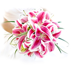 Classic Oriental Lily Wedding Bouquet $120