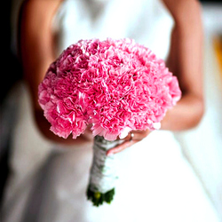 Classic Carnation Wedding Bouquet $85