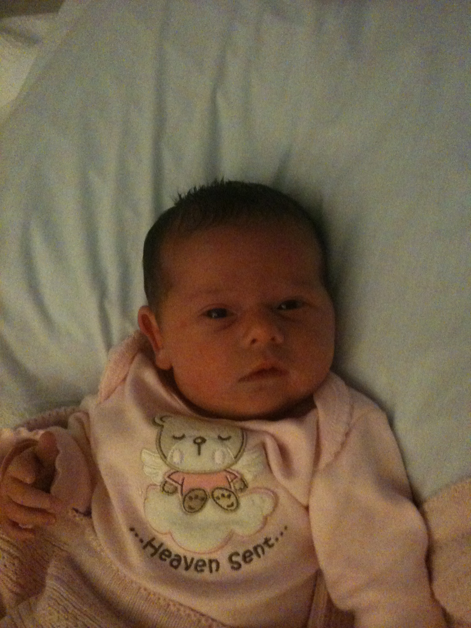 Doodlebug on the day she was born