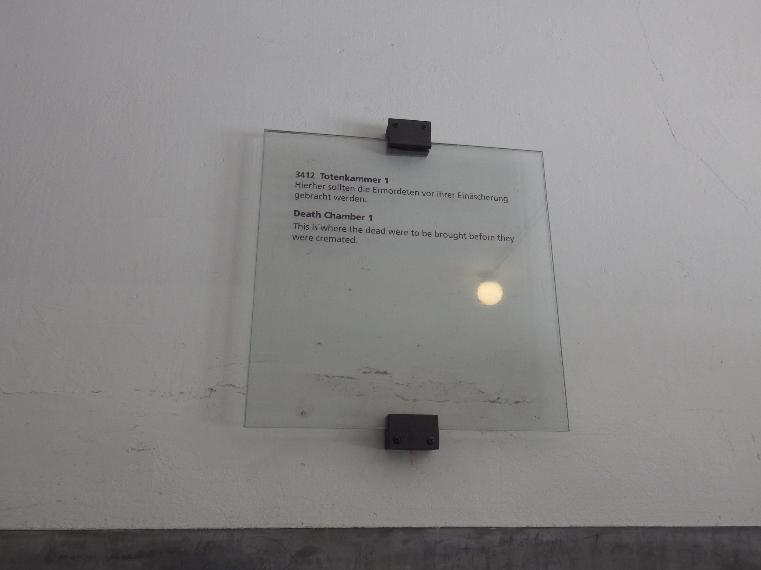 IMGP1873.JPG