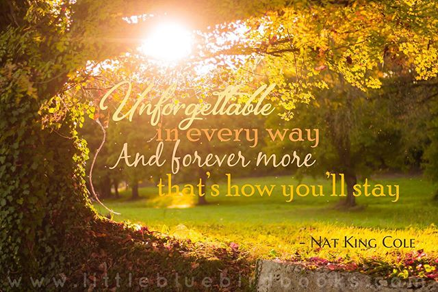 May your Sunday be as unforgettable.  Share this with someone unforgettable in your life and make them smile.  @littlebluebirdbooksandgifts  #sunday #share #natkingcole #beautiful #unforgettable #quotes #instaquotes #quotestoliveby #love