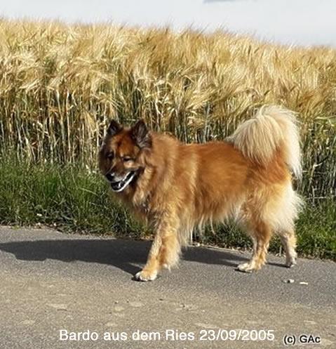 BardoausdemRies23.09.2005A.jpg