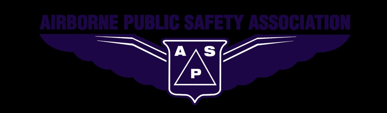 APSA Navy.png