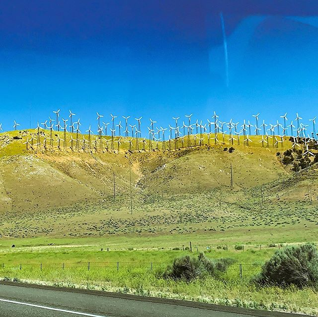 Windmills on a hill: so pretty and so inspiring. My kids love them because they're beautiful, I love them because they're one example of humanity being good caretakers of this place East of Eden. 💚 . . #cleanenergy #magicofchildhood #roadtrip #california #donspawn