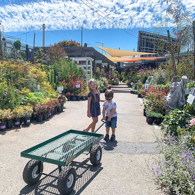Shopping for our new garden with the very best helpers 🌻