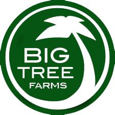 BTF-new-logo.jpg