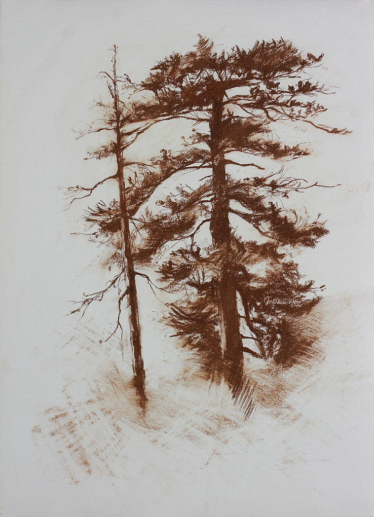 Untitled (two trees), 2010