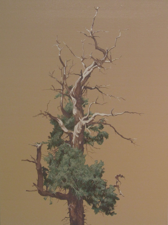 Grand Canyon, 2011
