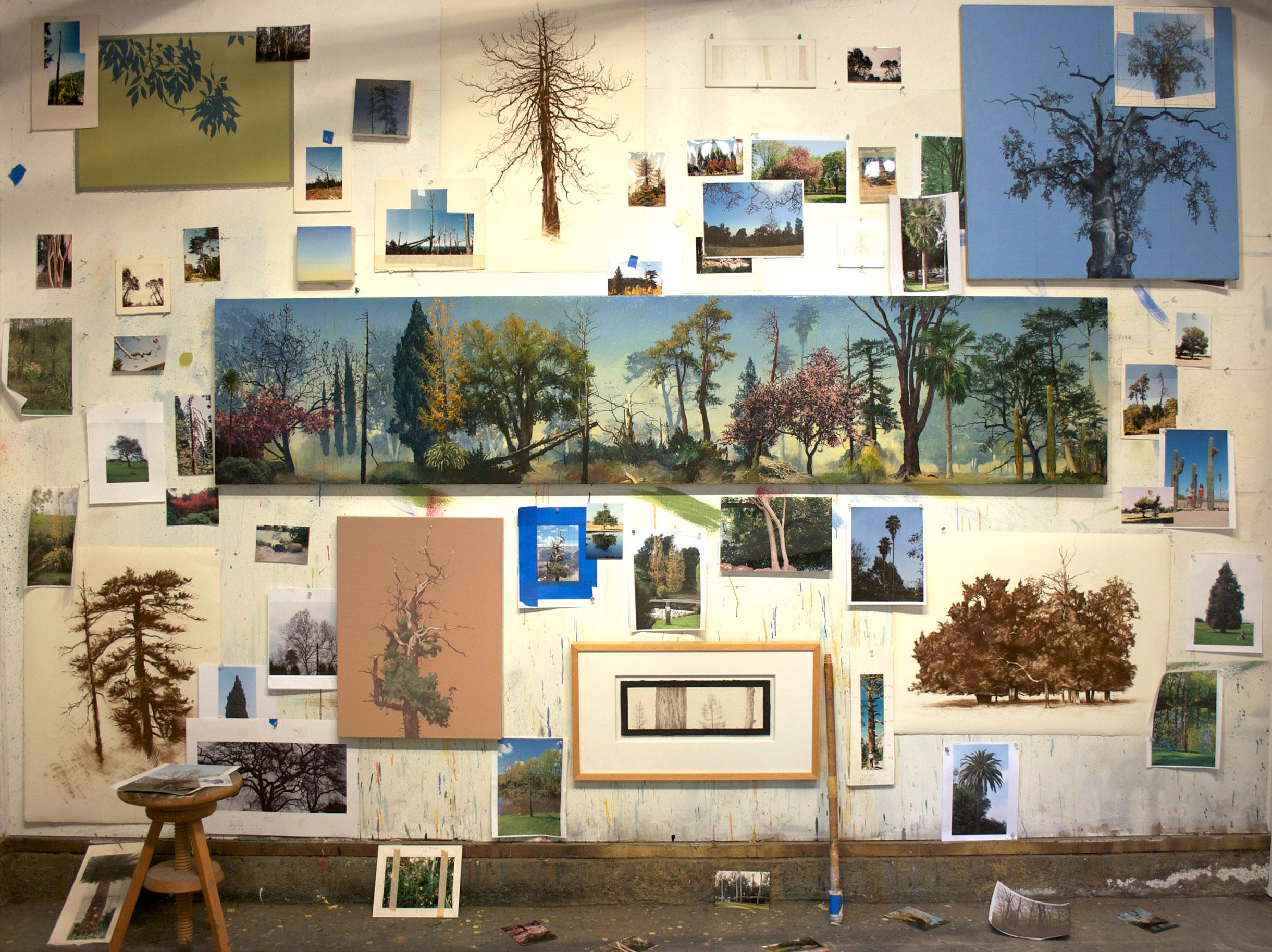 studio portrait for Arboretum exhibition 2011