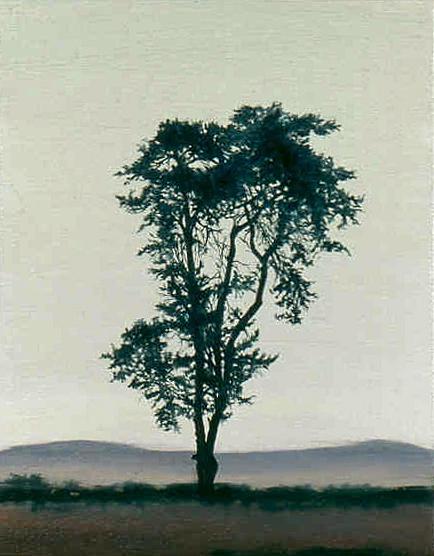 Arroyo Grande, 2001