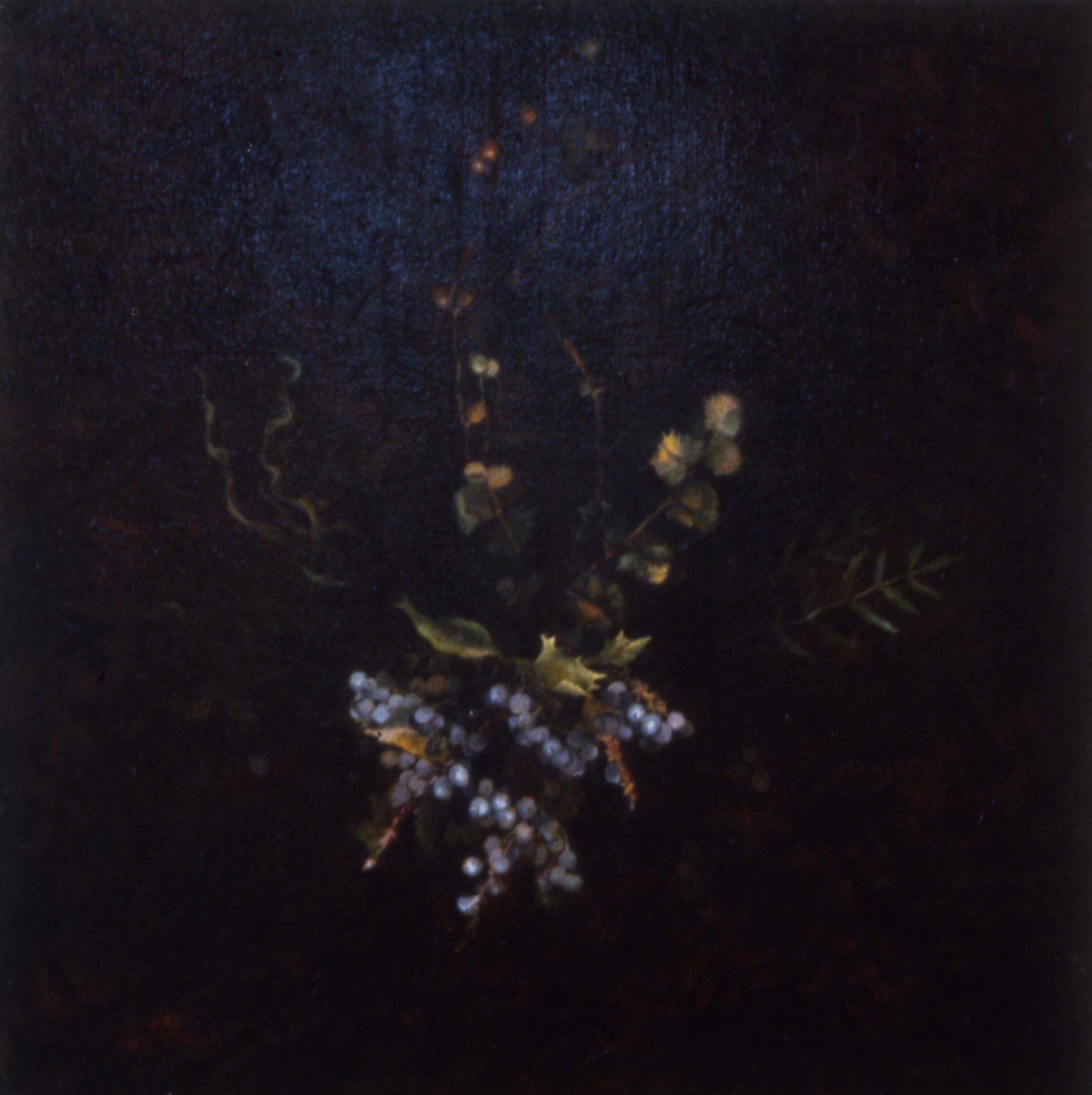 natural/History I, Bouquet, 1991