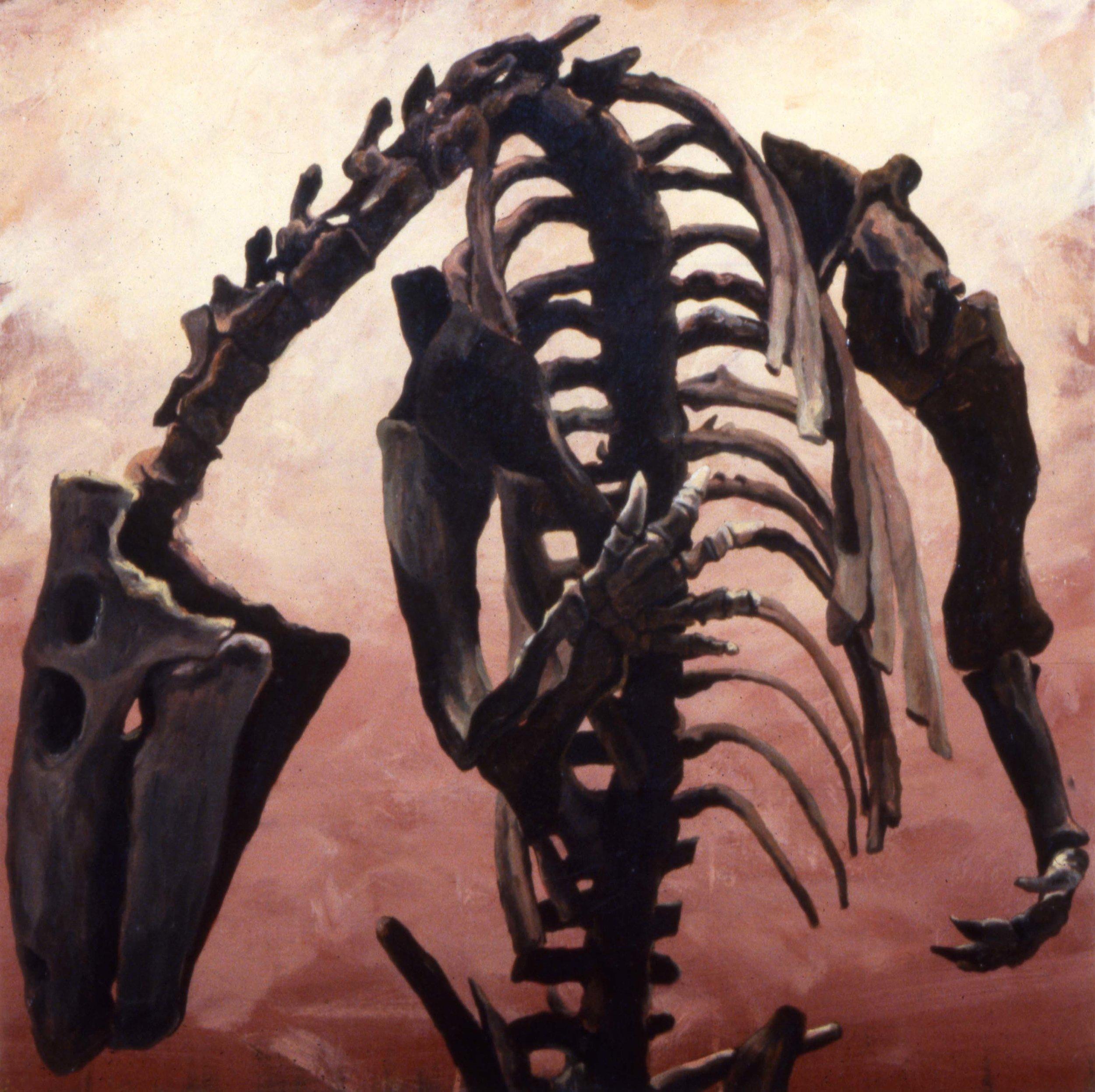 natural/History II, Posture, 1991