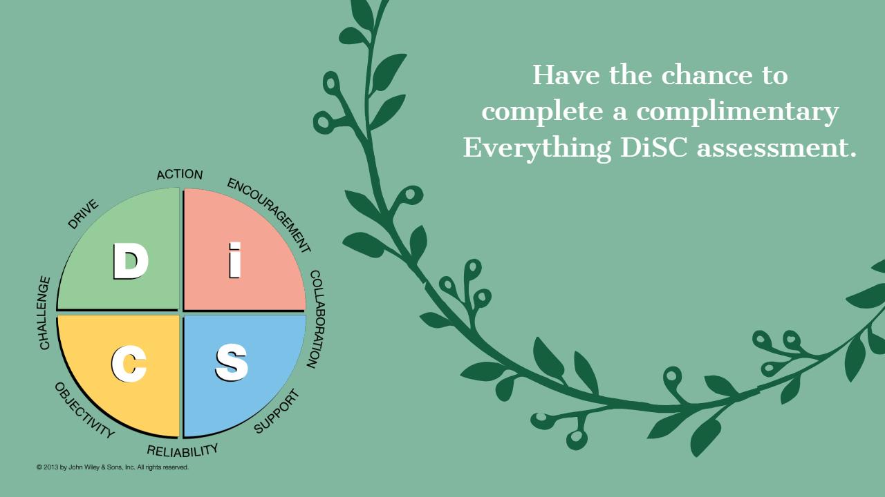 DiSC-profile-ad-any.jpg