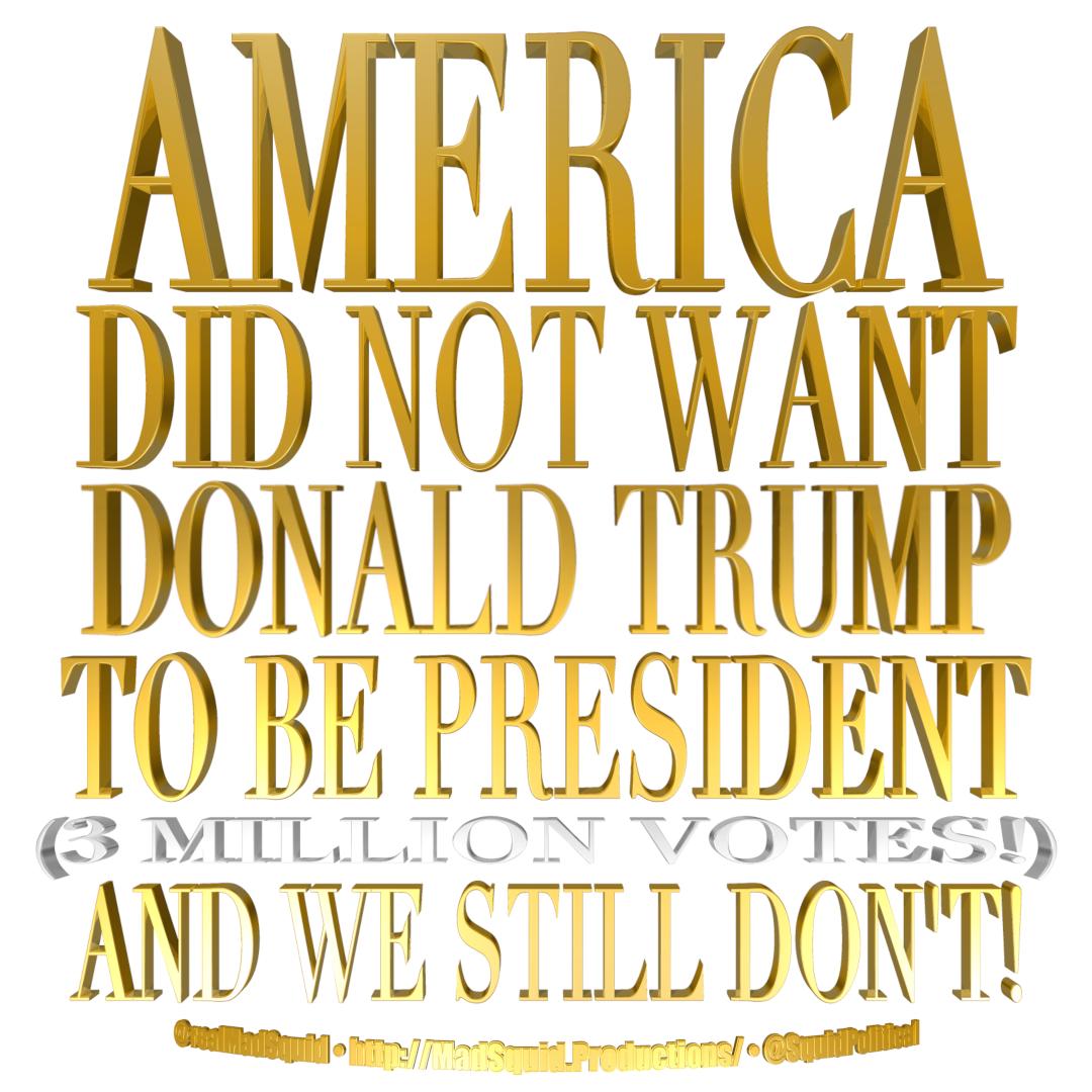AmericaDidntWantTrumpForPresident2.png
