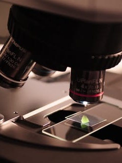 Decontamination of The Laboratory -