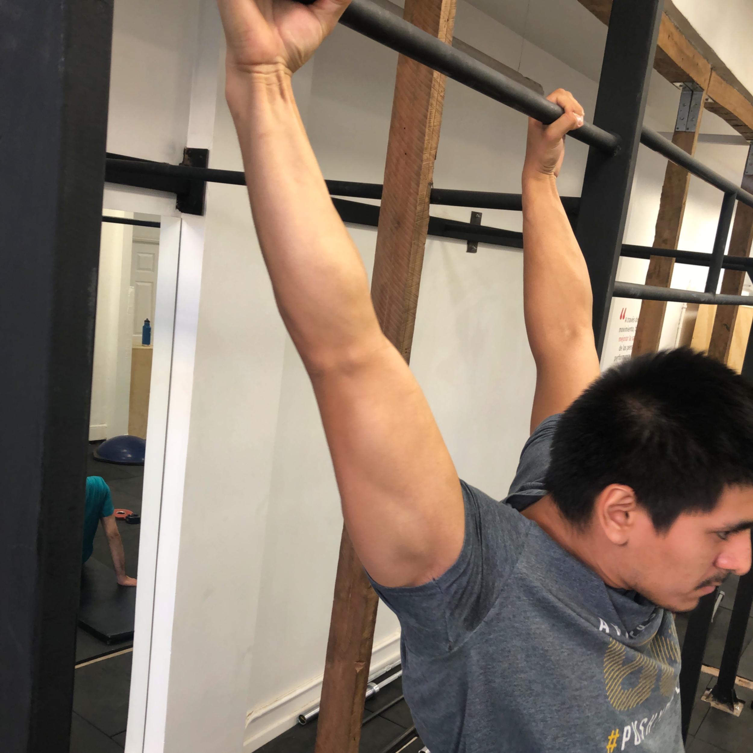 Óptima rotación externa  de hombros.