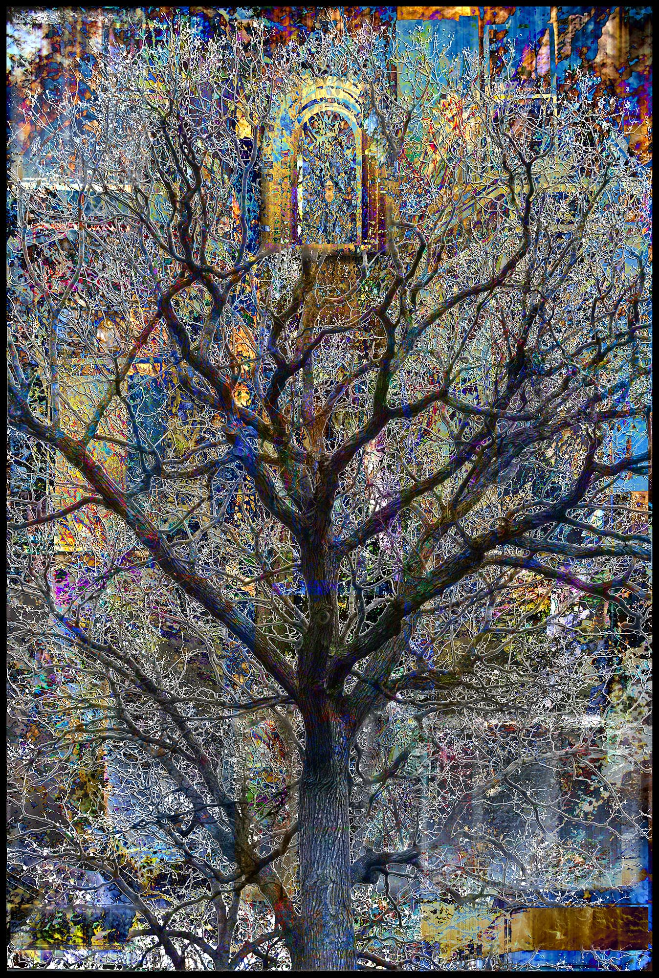 Big Tree | $20/mo | $250 purchase