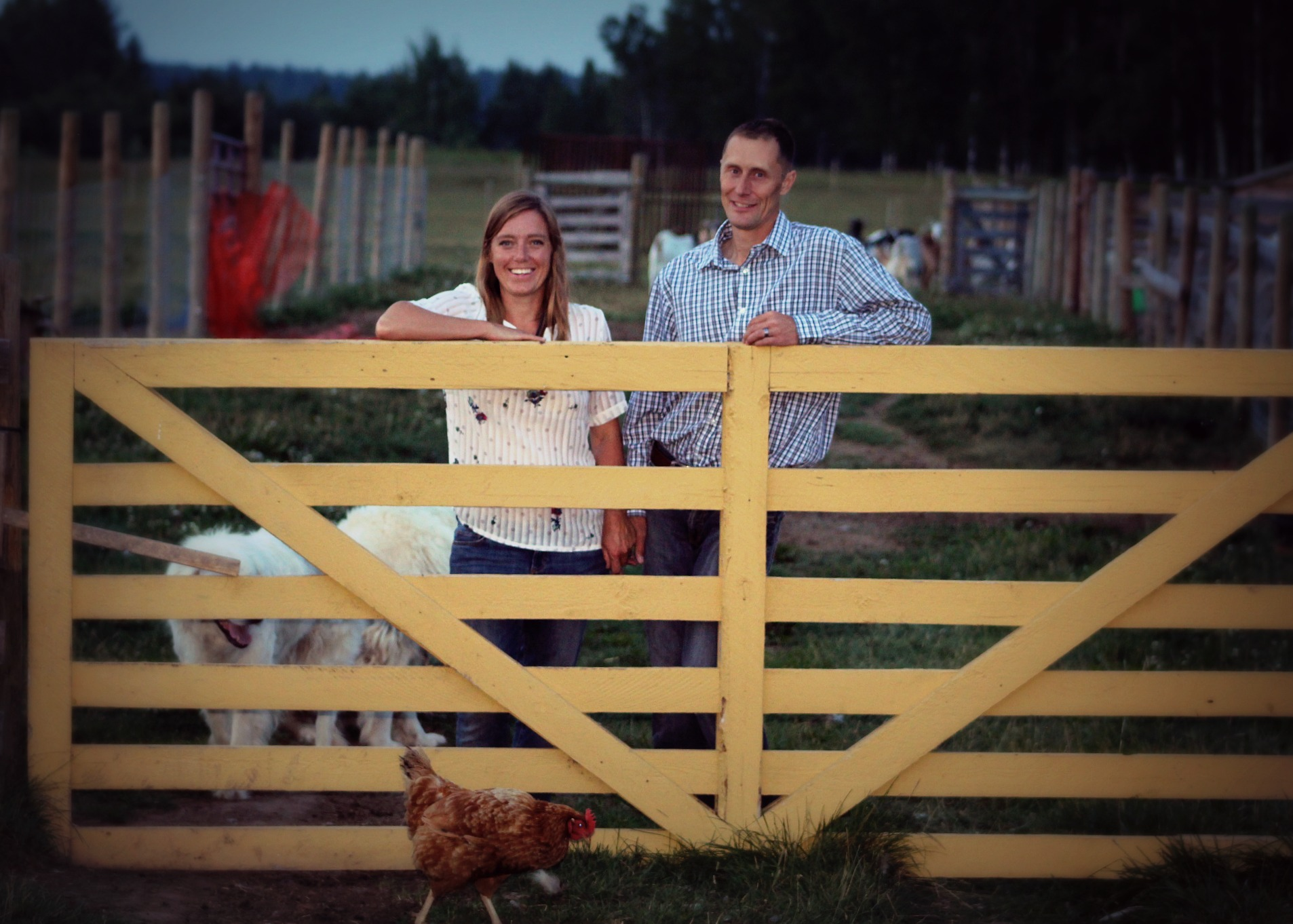 Welcome to  our Paddock - Where Real Food is Family Raised